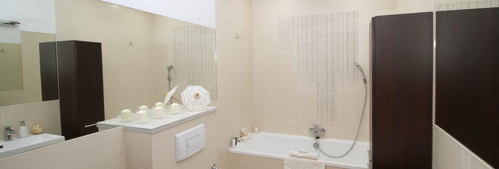 צביעת חדר אמבטיה עם עובש